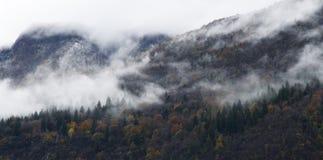 有雾的秋天山 免版税库存照片