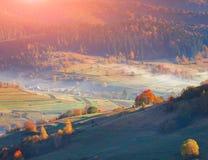 有雾的秋天早晨;在山村 库存照片