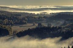 有雾的自然保护公园视图 免版税库存图片