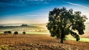 有雾的谷早晨,托斯卡纳 免版税库存照片