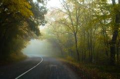有雾的路 免版税库存图片