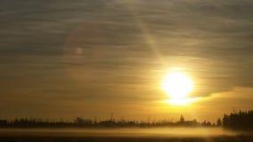 有雾的领域2 库存照片