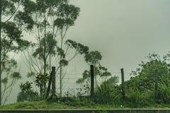 有雾的风景安地斯山的场面厄瓜多尔 免版税库存图片