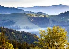 有雾的风景 免版税库存照片