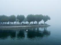 有雾的风景 库存图片