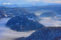 有雾的风景Bohinj湖斯洛文尼亚 免版税图库摄影