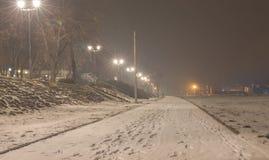 有雾的结冰的夜,步行方式 免版税库存图片
