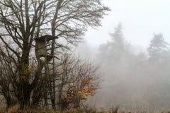 有雾的11月风景 免版税库存图片