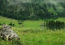 有雾的Koenigsee,德国 库存图片