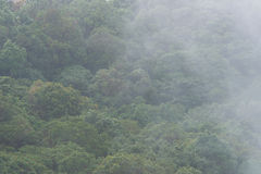 有雾的moutain 免版税库存照片