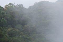 有雾的moutain 库存图片