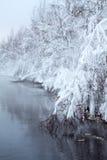 有雾的Winter湖在水 库存照片