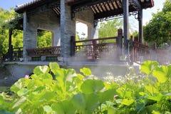 有雾水池的中国古典庭院 免版税库存图片