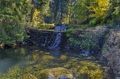 有露台的河、瀑布和不同地树的老公园Tsarska或皇家Bistritsa在令人尊敬的秋季森林里 免版税库存照片