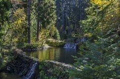 有露台的河、瀑布和不同地树的老公园Tsarska或皇家Bistritsa在令人尊敬的秋季森林里 免版税库存图片