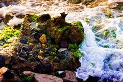 有青苔和泡沫细节的岩石海岸线 库存照片
