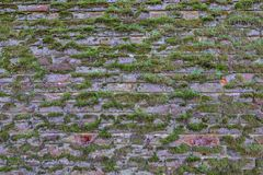 有青苔生长的老被风化的砖墙 免版税库存图片