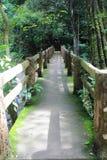 有青苔的一座桥梁 免版税图库摄影