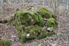 有青苔的巨石城在伯爵夫人thory Elisabeth BÃ的¡附近, ÄŒachtice城堡的森林里  库存图片