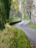 有青苔的弯曲道路在多尔多涅省,法国盖了墙壁 免版税库存照片