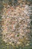有青苔的砖墙 库存图片