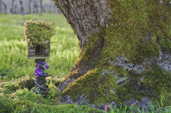 有青苔的神仙的房子在树干旁边 图库摄影