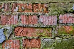 有青苔的老红砖墙壁 免版税库存图片