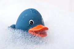 有青苔的蓝色橡胶鸭子玩具在浴 免版税库存照片