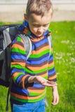 有青蛙的男小学生 库存照片
