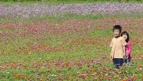 有非常好的天气的花园背景的 免版税库存照片