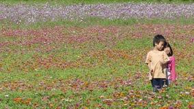 有非常好的天气的花园背景的 免版税库存图片