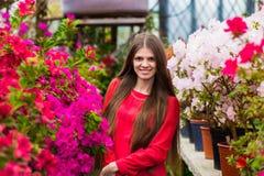 有非常长的头发的相当微笑的少妇在一件红色女衬衫 库存图片