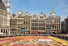 有非洲题材的花地毯2012年 库存图片