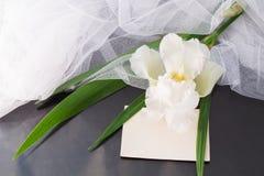 有面纱和空白的白色虹膜在黑暗的光滑的backgro 库存照片