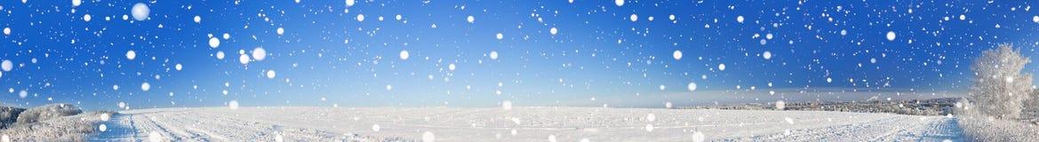 有领域的农村冬天风景全景,雪,森林,城市 免版税库存照片