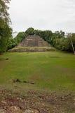有领域的捷豹汽车寺庙 库存图片