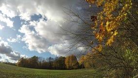 有领域的秋天农田和树和云彩行动,时间间隔 股票视频