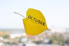 有题字的10月黄色叶子 库存照片