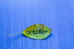 有题字的10月黄色叶子 免版税库存照片