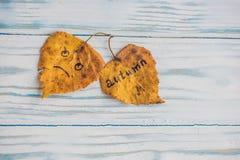 有题字秋天的黄色和绿色叶子在老木背景 免版税图库摄影