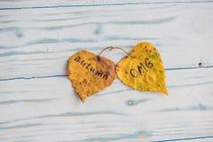 有题字秋天的黄色和绿色叶子在老木背景 免版税库存照片