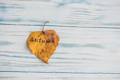 有题字秋天的黄色和绿色叶子在老木背景 图库摄影