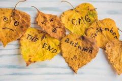 有题字秋天的黄色和绿色叶子在老木背景 库存图片