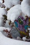有颜色和纹理的积雪的罐 免版税库存图片