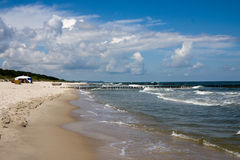 有风海岸的春天 图库摄影