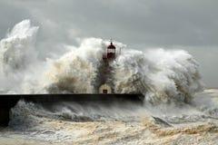 有风海岸 图库摄影
