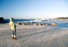 有风海滩的日 库存照片