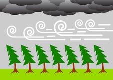 有风的天气 免版税库存图片