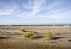 有风的海滩 免版税库存图片