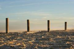 有风的海滩 免版税图库摄影